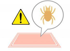Motten- und Milbenbekämpfung